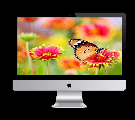 iMac repair kolkata